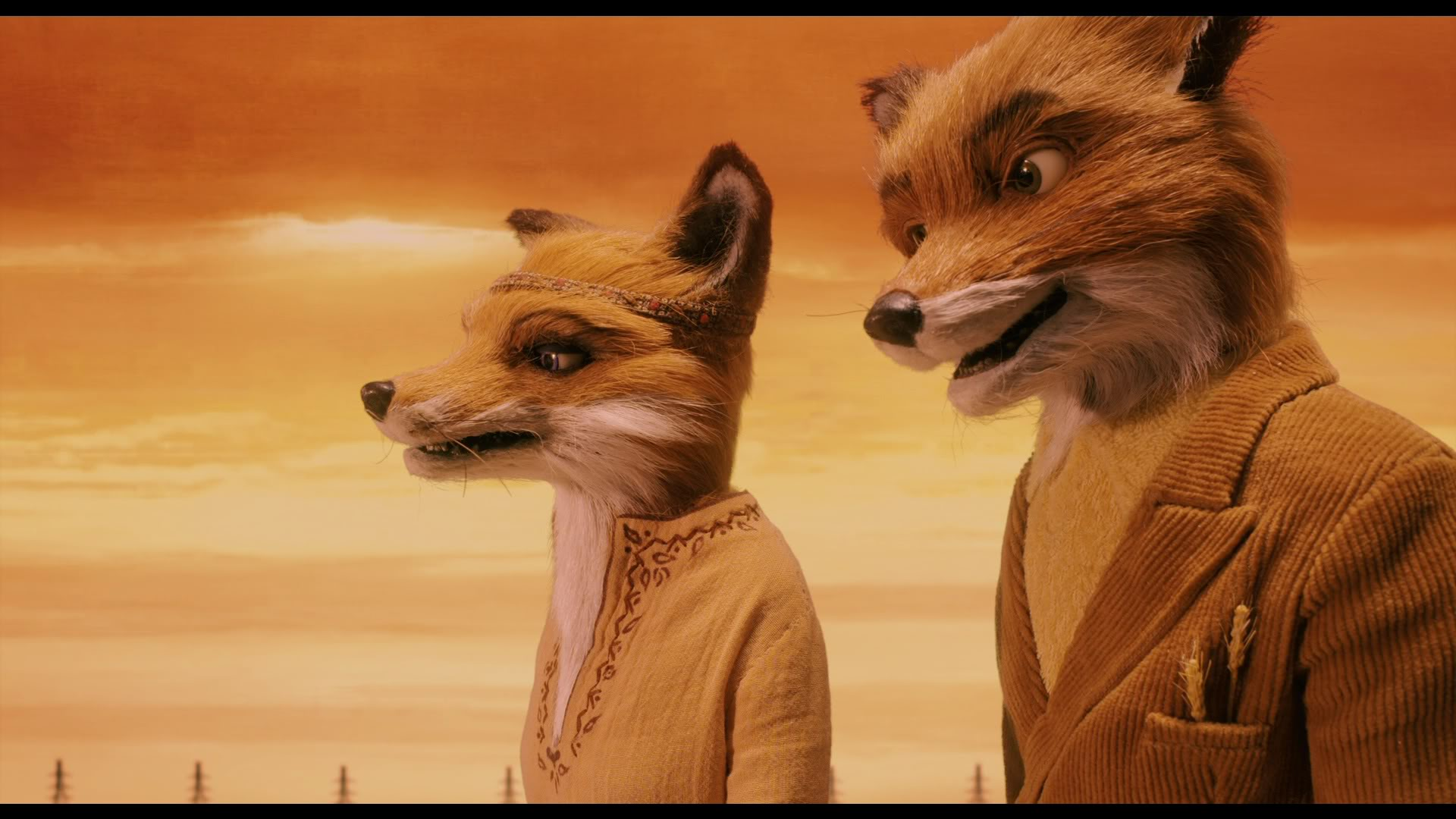 fantastic mr fox Visually and conceptually, fantastic mr fox doesn't remotely resemble anything wes anderson has tackled before: it's a manic kids' movie, it's stop-motion animated, and it's his first film based on an outside source—a minor story by charlie and the chocolate factory author roald dahl.