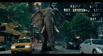 MoneySuperMarket – Epic Elephunk