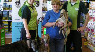 Pets At Home – Vets and Groomers