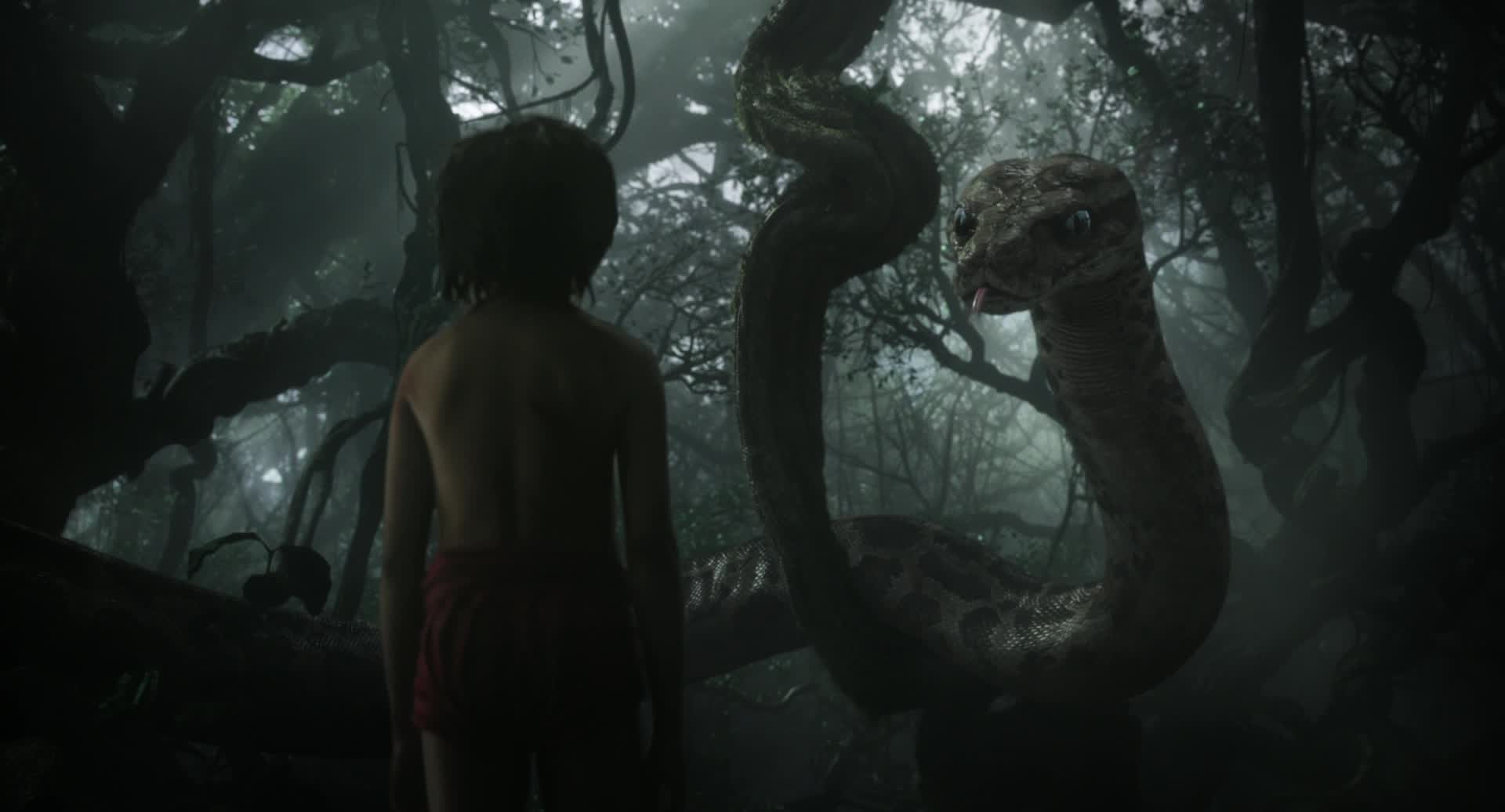 the jungle book themes The empire and its glories were the themes also in mason's the four feathers, a novel set in sudan and another film the korda brothers made elephant boy, made by the kordas in 1937, was based on another story in the jungle book, titled toomai and the elephants sabu dastagir, one of the first indian.