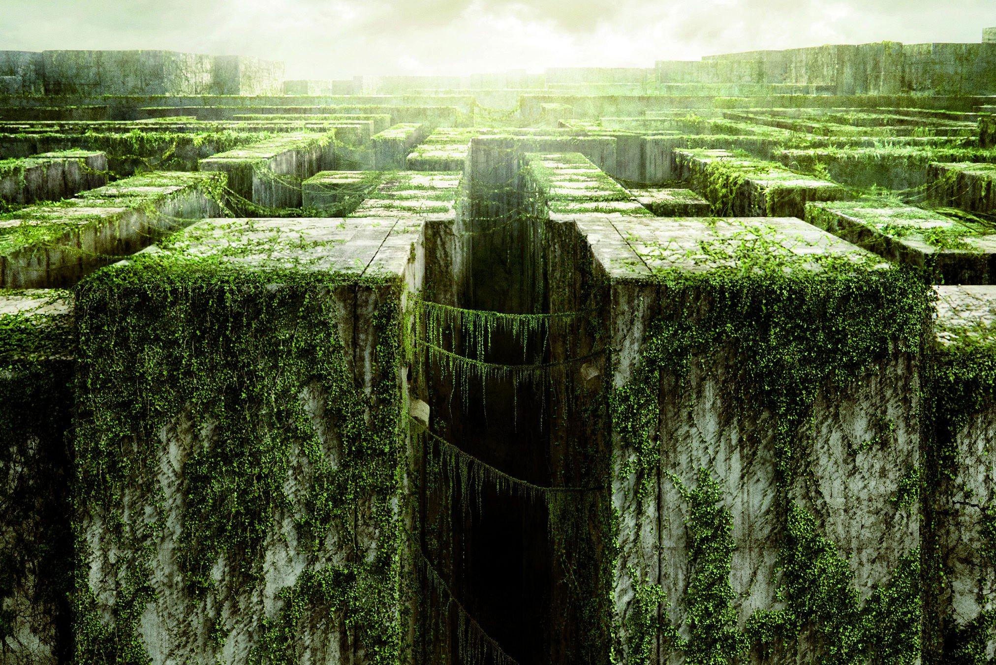Resultado de imagen de maze runner